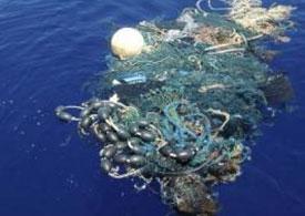 plastic-rubbish-pacific-gyre
