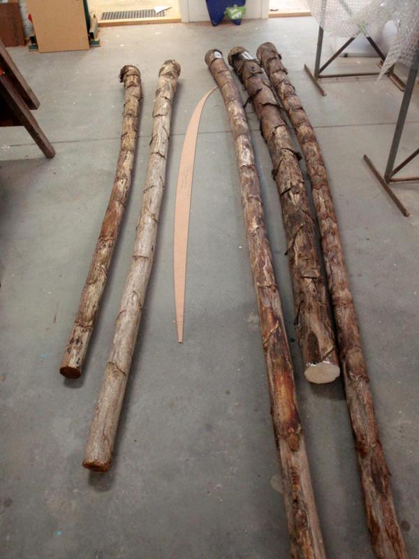 agave-sticks-2