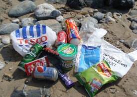 beach_litter